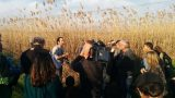 field-tour-of-bird-watching_12455062044_o